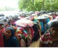 টাংগাইলে দু'টি ইউপি নির্বাচনে একটিতে আওয়ামীলীগ ও অপরটিতে বিদ্রোহী প্রার্থী বিজয়