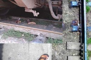 শাটল ট্রেনে কাটা পড়ে চট্টগ্রাম বিশ্ববিদ্যালয়ের ছাত্রের দুই পা বিচ্ছিন্ন