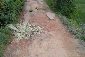 চৌদ্দগ্রাম আলকরা-কুন্জুশ্রীপুর সড়কের বেহালদশা