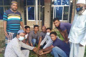 যায়যায়দিন ফ্রেন্ডস ফোরামের উদ্যোগে চৌদ্দগ্রামে বৃক্ষরোপন কর্মসূচী পালিত